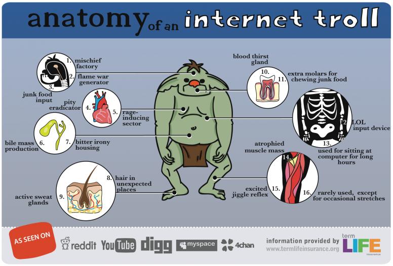 Anatomy of an Internet Troll
